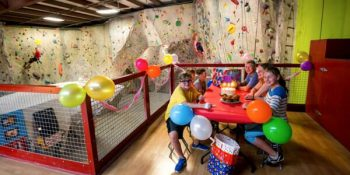 Vertical Birthday Parties